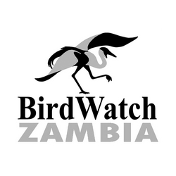 Bird Watch Zambia